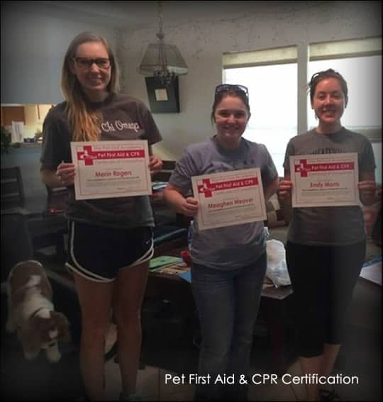 pet-first-aid-and-cpr-certification